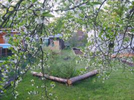 Foto 3 Gartenhaus und Garten