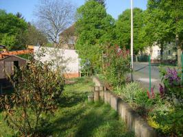 Foto 8 Gartenhaus und Garten