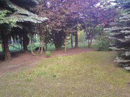 Foto 3 Gartenland mit Gartenhaus - Nähe Görlitz