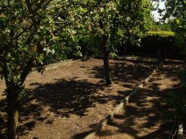 Foto 6 Gartenlaube mit Pachtland im Kleingartenverein