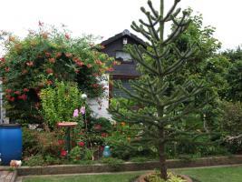 Gartenparadies