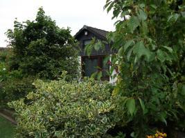 Foto 2 Gartenparadies