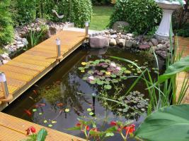 Gartenteich m.Pflanzen u.Fischen