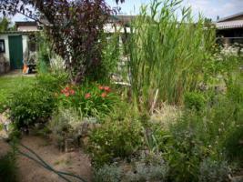 Gartenverkauf