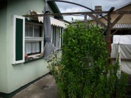 Foto 4 Gartenverkauf