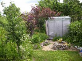 Foto 5 Gartenverkauf