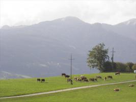 Foto 10 Gelegenheit: nagelneues Wohn- od. Ferienhaus!