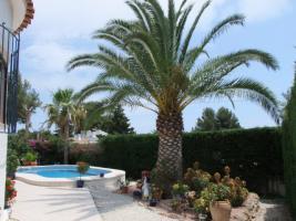 Foto 5 Gepflegte Villa mit einem privaten Pool in Moraira