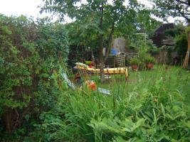 Foto 2 Gepflegter Kleingarten in Chemnitz zu verkaufen