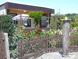 Foto 2 Gepflegter Pachtgarten in Braunichswalde