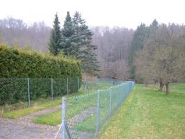 Foto 3 Gepflegtes Wochenendgrundstück mit Waldanteil