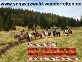 Foto 3 Geschenkidee für Freizeitreiter, Wanderreiter, Westernreiter schwarzwald-wanderreiten.de