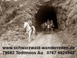 Foto 3 Geschenkidee für Reiter, Wanderreiter, Freizeitreiter - Wanderitt ab Todtmoos Au