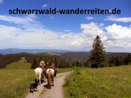 Foto 8 Geschenkidee für Reiter, Wanderreiter, Freizeitreiter - Wanderitt ab Todtmoos Au