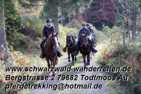 Foto 16 Geschenkidee für Reiter, Wanderreiter, Freizeitreiter - Wanderitt ab Todtmoos Au