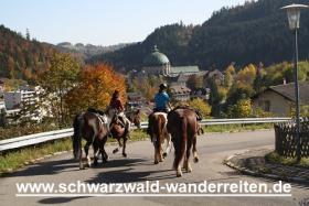 Foto 21 Geschenkidee für Reiter, Wanderreiter, Freizeitreiter - Wanderitt ab Todtmoos Au