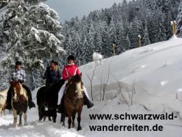 Foto 22 Geschenkidee für Reiter, Wanderreiter, Freizeitreiter - Wanderitt ab Todtmoos Au