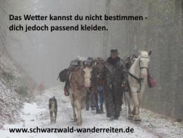 Foto 25 Geschenkidee für Reiter, Wanderreiter, Freizeitreiter - Wanderitt ab Todtmoos Au