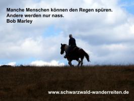 Foto 31 Geschenkidee für Reiter, Wanderreiter, Freizeitreiter - Wanderitt ab Todtmoos Au