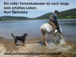 Foto 35 Geschenkidee für Reiter, Wanderreiter, Freizeitreiter - Wanderitt ab Todtmoos Au