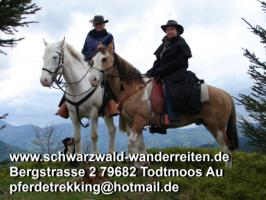 Foto 39 Geschenkidee für Reiter, Wanderreiter, Freizeitreiter - Wanderitt ab Todtmoos Au