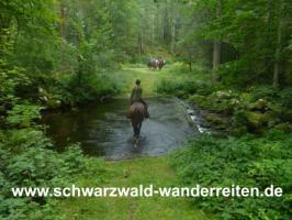 Foto 40 Geschenkidee für Reiter, Wanderreiter, Freizeitreiter - Wanderitt ab Todtmoos Au