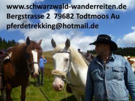 Foto 55 Geschenkidee für Reiter, Wanderreiter, Freizeitreiter - Wanderitt ab Todtmoos Au