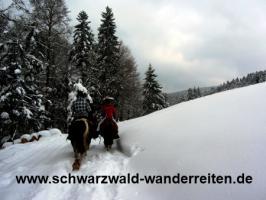 Foto 56 Geschenkidee für Reiter, Wanderreiter, Freizeitreiter - Wanderitt ab Todtmoos Au