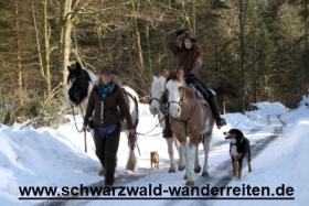 Foto 64 Geschenkidee für Reiter, Wanderreiter, Freizeitreiter - Wanderitt ab Todtmoos Au