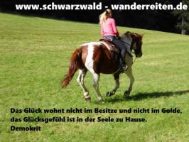 Foto 66 Geschenkidee für Reiter, Wanderreiter, Freizeitreiter - Wanderitt ab Todtmoos Au
