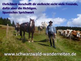 Foto 67 Geschenkidee für Reiter, Wanderreiter, Freizeitreiter - Wanderitt ab Todtmoos Au