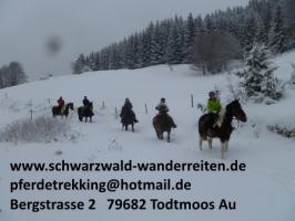 Foto 75 Geschenkidee für Reiter, Wanderreiter, Freizeitreiter - Wanderitt ab Todtmoos Au