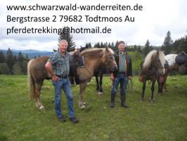 Foto 77 Geschenkidee für Reiter, Wanderreiter, Freizeitreiter - Wanderitt ab Todtmoos Au