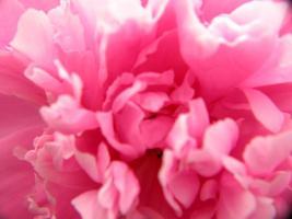 Foto 2 Geschenkideen Wellness  Massage  Kosmetik Relaxen