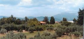 Gewerbegruendstück bei Patras/Griechenland
