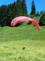 Foto 4 Gleitschirmfliegen - lerne Gleitschirmfliegen im Berner Oberland, BE, CH