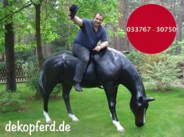 Foto 4 Gotha - Deko Kuh lebensgross / Liesel von der Alm oder Edelweiss von der Alm oder Deko Pferd lebensgross … www.dekomitpfiff.de