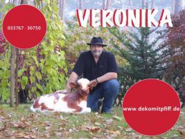 Foto 6 Gotha - Deko Kuh lebensgross / Liesel von der Alm oder Edelweiss von der Alm oder Deko Pferd lebensgross … www.dekomitpfiff.de