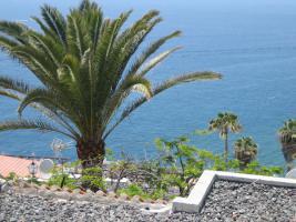 Foto 10 Gran Canaria Immobilien - Verkauf / Vermietung / Beratung - Sun-World-Immobilien