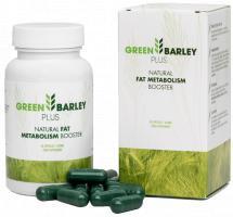 Green Barley Plus ist die Verbindung zweier hochwertiger Inhaltsstoffe: grüner Gerste und Garcinia Cambogia