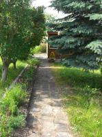 Foto 4 Große Gartenanlage in Bleicherode zum pachten oder verkaufen