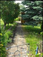 Foto 5 Große Gartenanlage in Bleicherode zum pachten oder verkaufen
