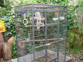 Foto 2 Großer Papageienkäfig in prima Zustand