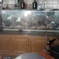 Großes Aquarium mit Unterschrank& Zubehör