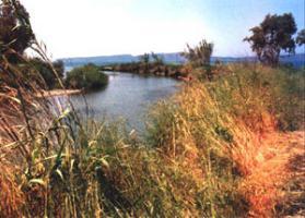 Foto 2 Grosses Grundstueck am Fluss/Griechenland