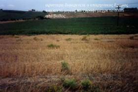 Grosses Grundstück auf Halkidiki/Griechenland