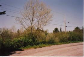 Großes Grundstück in Kanada zu verkaufen oder Tausch mit Preisausgleich.