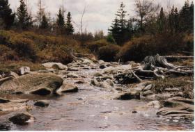 Foto 3 Großes Grundstück in Kanada zu verkaufen oder Tausch mit Preisausgleich.