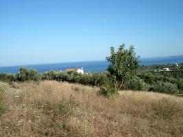 Grosses Grundstueck nahe Petalidi / Griechenland