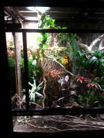 Foto 3 Großes Terrarium mit passendem Unterschrank und viel Zubehör